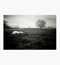Field Nude Photographic Print