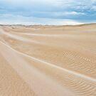 South Australia's Far West Coast. by Mick Smith