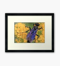 Wasp Wings Framed Print