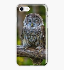 Willow the tired Barred Owl iPhone Case/Skin