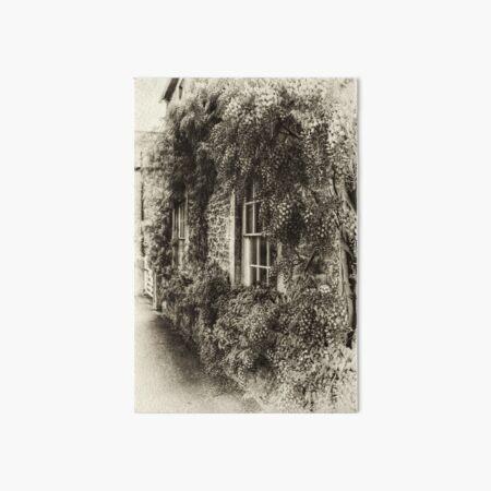The Wisteria Window Art Board Print