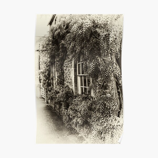 The Wisteria Window Poster