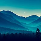 Blue Forest by silolight