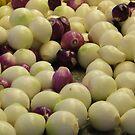 Onions by shortarcasart