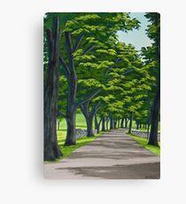 Oak Drive Canvas Print