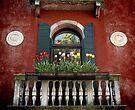 Window, Venezia by pmreed