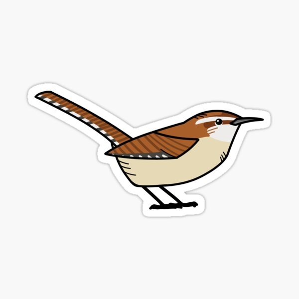 Carolina Wren Sticker