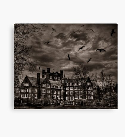 Daydreams Darken Into Nightmares Canvas Print