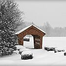 Little Red Covered Bridge by Diana Nault