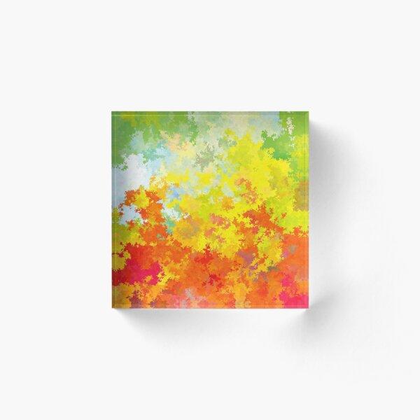 Diviso 4 - 170211/175315 Acrylic Block