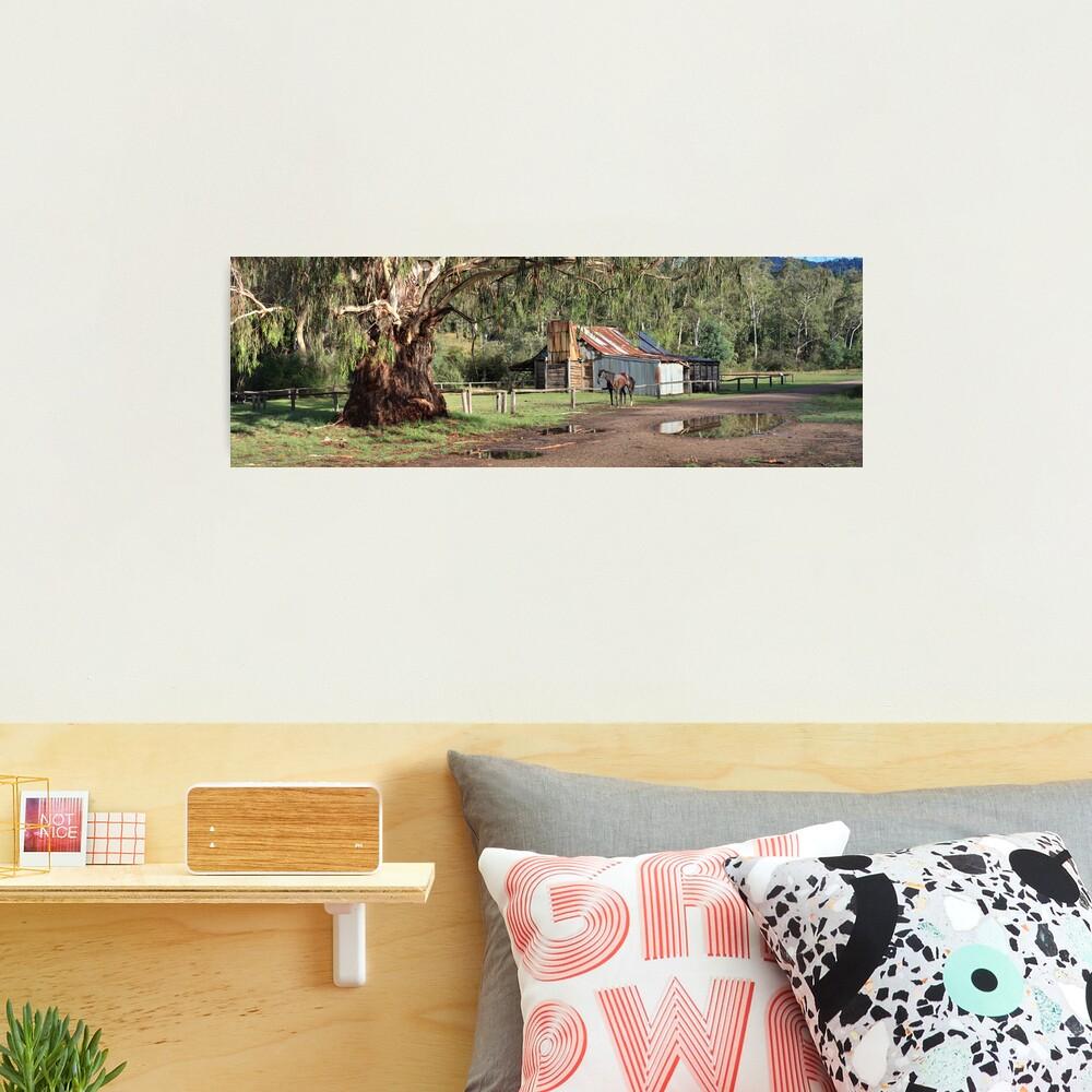 Frys Hut, Howqua Hills, Australia Photographic Print