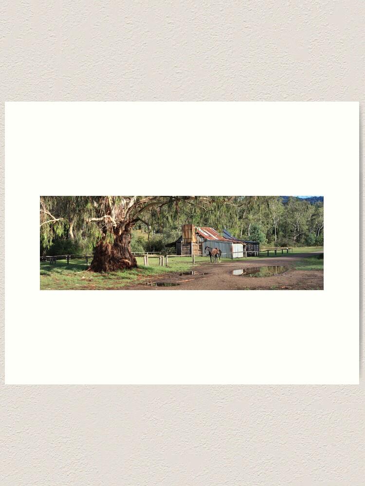 Alternate view of Frys Hut, Howqua Hills, Australia Art Print