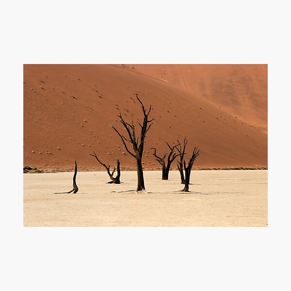 Ghosts of the Deadvlei II Photographic Print