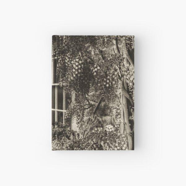 The Wisteria Window Hardcover Journal