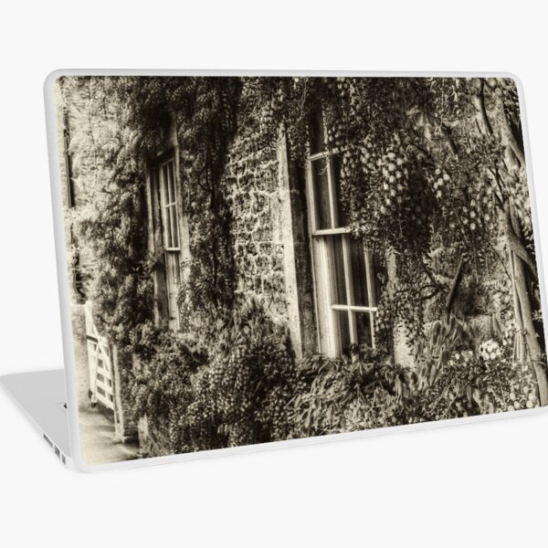 The Wisteria Window Laptop Skin