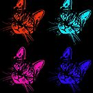 Tabby Cat Pop Art Orange, Turquoise, Pink, Purple by WiseKitty