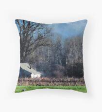 Skagit Barn Digital Painting Throw Pillow