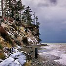 West Beach Snow by Rick Lawler