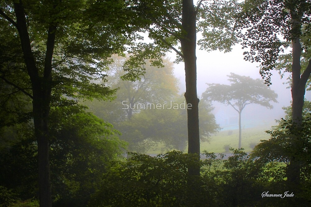 Foggy September Morning by SummerJade