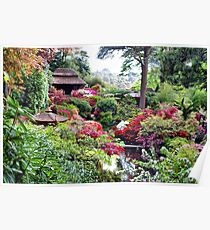 Coloured Garden Poster