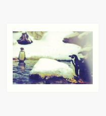 Pinguin Day 1 - Lonesome Art Print