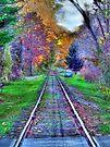 Off the Tracks  by Marcia Rubin
