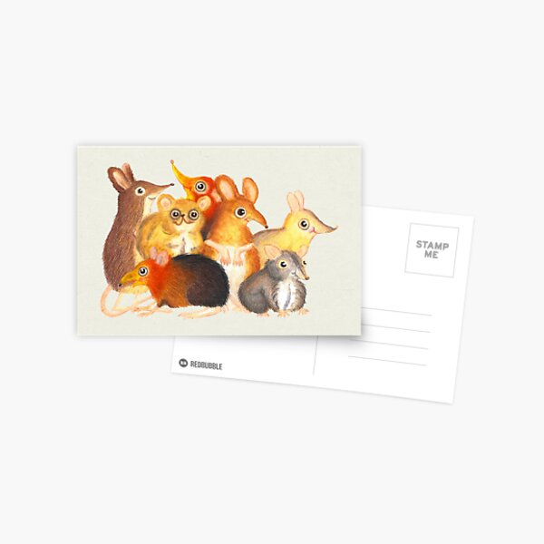 Elephant shrew crew Postcard