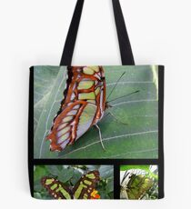 Butterfly (South America) ~ Malachite Tote Bag