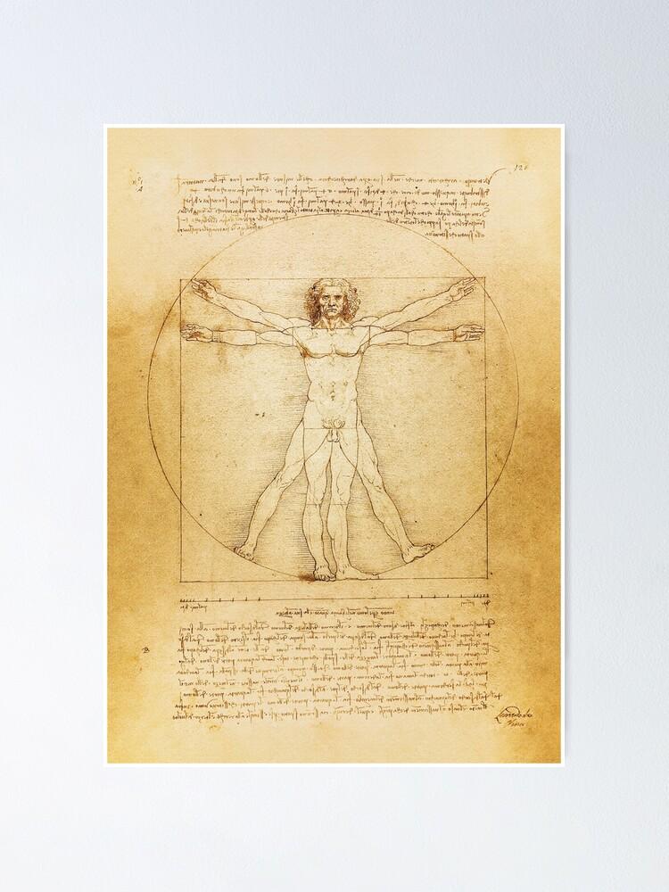 c.1490 POSTER VITRUVIAN MAN The Human Form Art by Leonardo Da Vinci