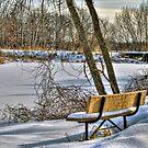 Winter Serenity by ECH52