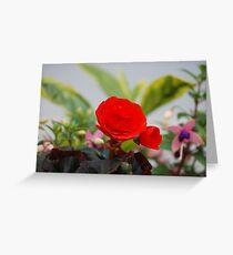 Vermilion floral utopia  Greeting Card