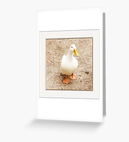 gimme de bread Greeting Card