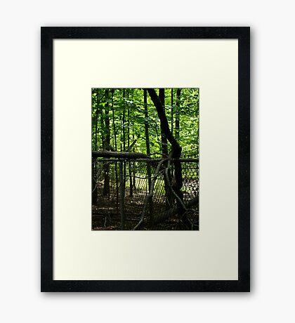 Nature Always Wins Framed Print