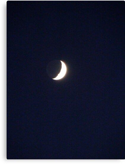 Goodnight Moon by fairielights
