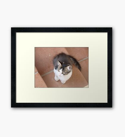 Alone On a Stair Framed Print