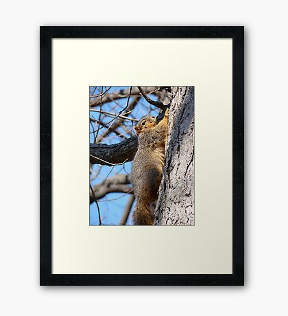 With the Greatest of Ease Framed Print