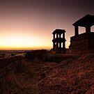 Sentinels  by Vikram Franklin
