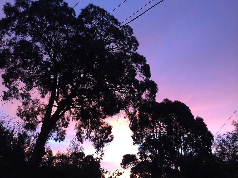 pink and purple sky with dark trees by FatLikeSnorlax