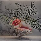 Still life with Grevillea Banksii by andreisky
