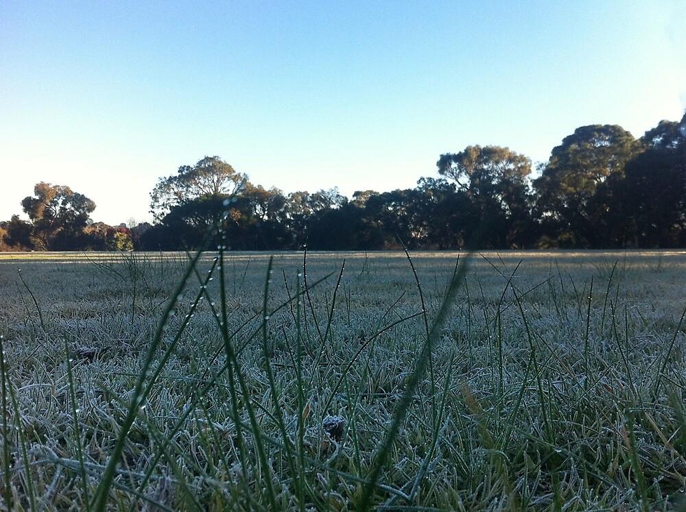frosty morning dew by FatLikeSnorlax