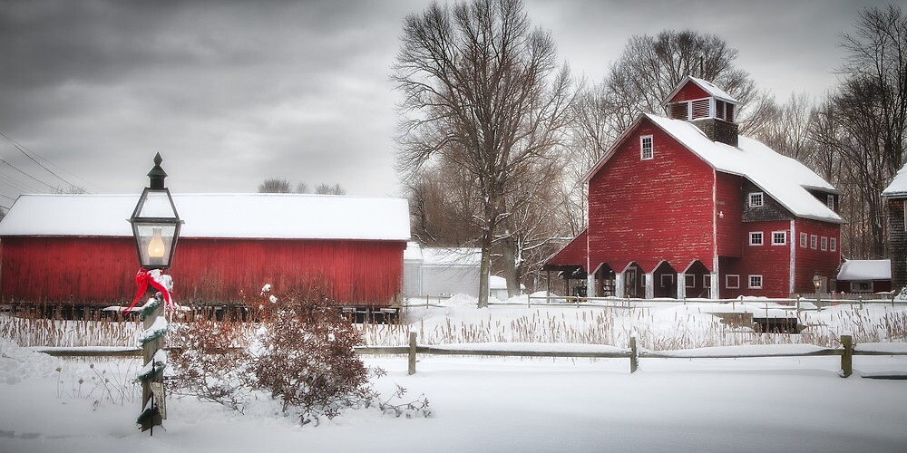 Red Barns by Michael  Petrizzo