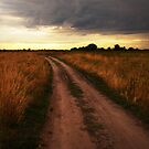 Road by fenist