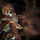 Orchid Design by Mistyarts