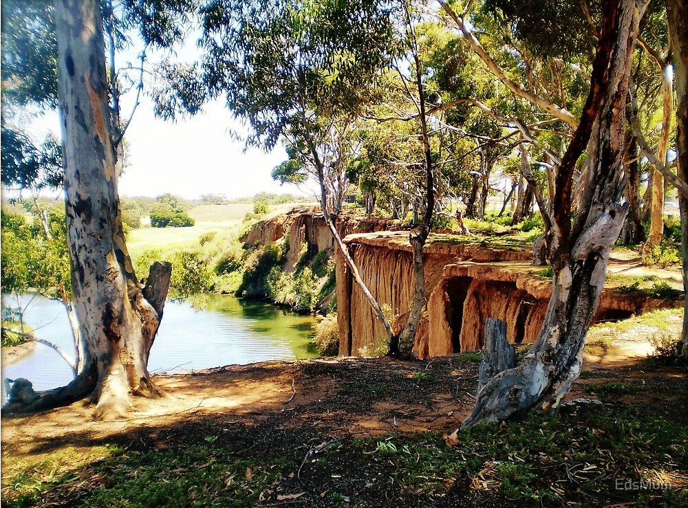 At the bend of the River - Werribee Vic. Australia by EdsMum