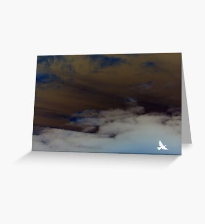 hope (clouded sky, white bird flying free) Greeting Card