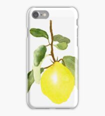 First Quince iPhone Case/Skin