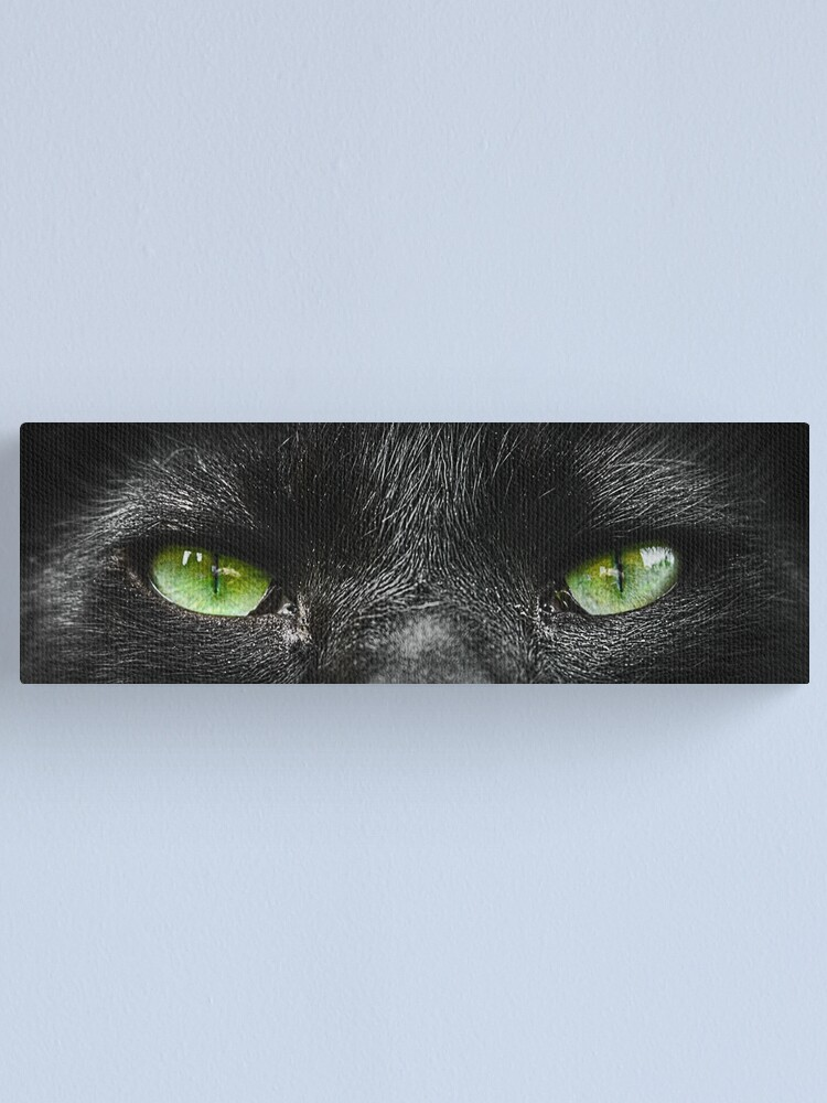 Alternate view of Someone's Watching You. Canvas Print