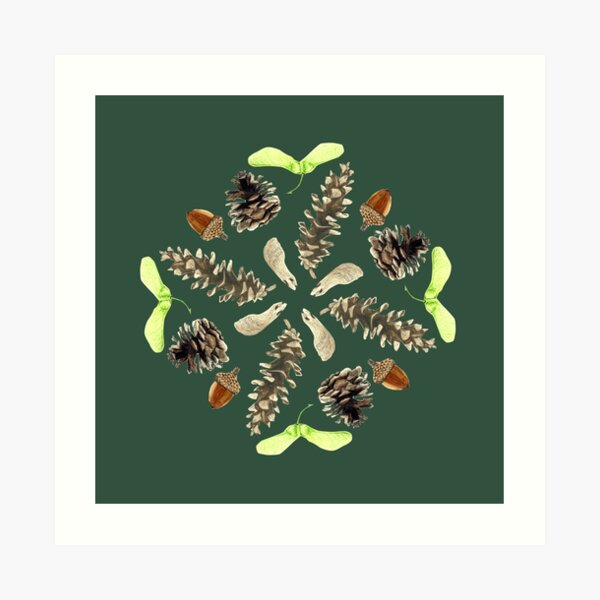 Woodland Mandala - Seeds and Pine Cones- watercolor Art Print