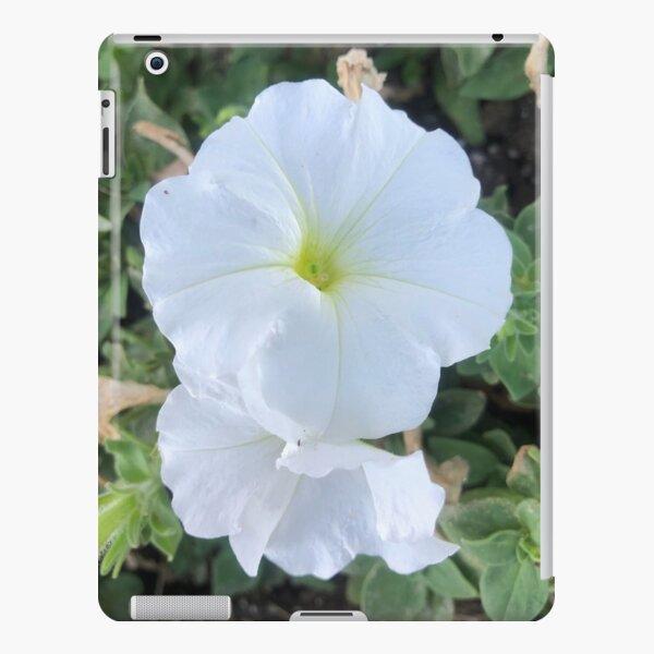 White Angel Trumpet iPad Snap Case
