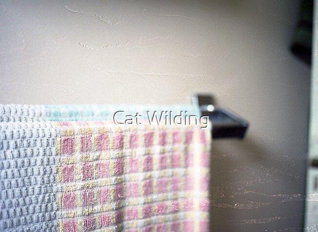 Towel Rail by Cat Wilding